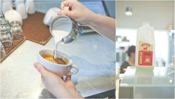 portola coffee 3