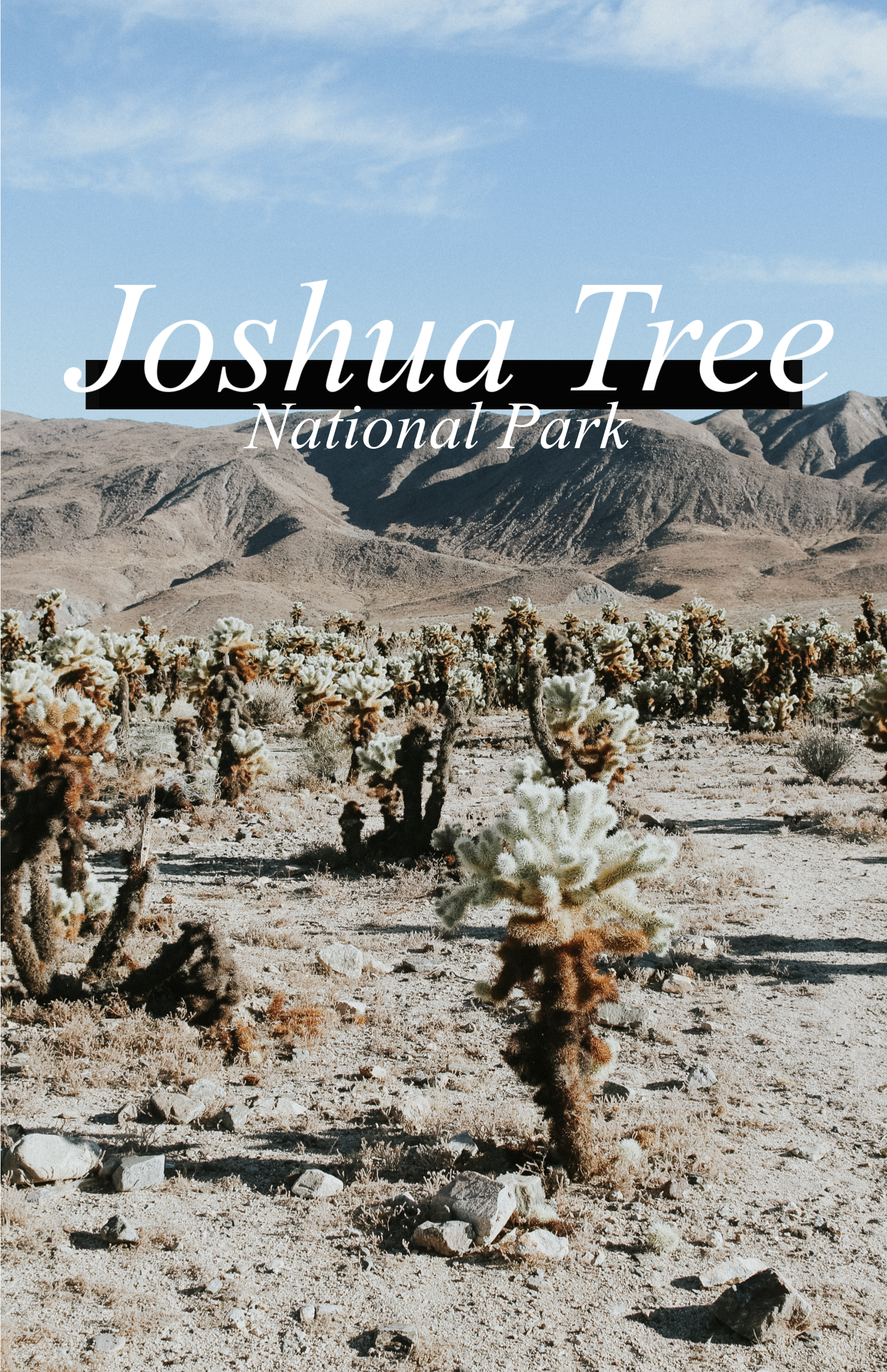 Day 1: Pioneertown and Joshua Tree National Park